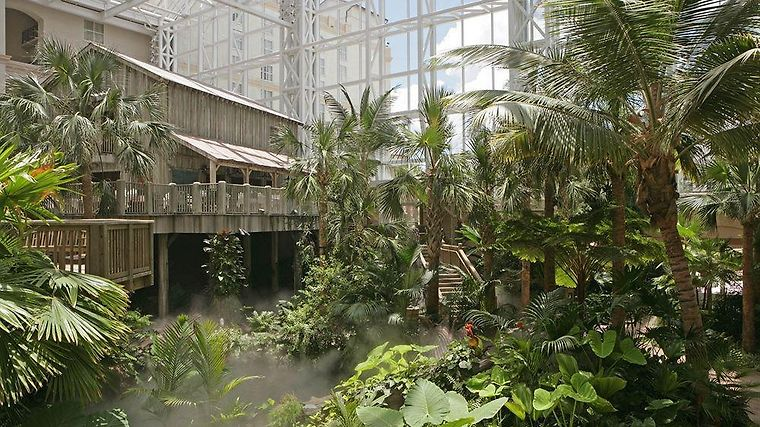 Gaylord Palms Resort & Spa Exterior
