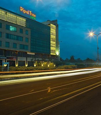 Pipal Tree Hotel photos Exterior Hotel information
