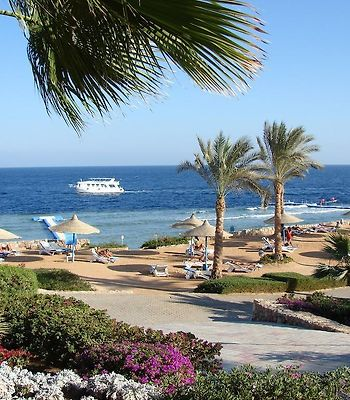 Queen Sharm Resort photos Exterior Hotel information