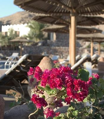 Bedouin Moon Hotel photos Exterior Hotel information