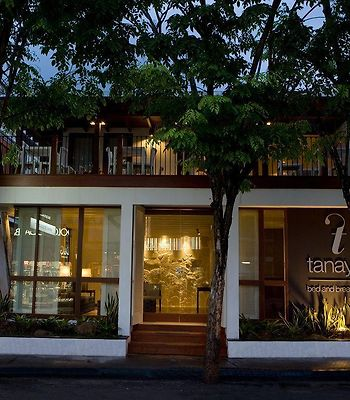 Bamboo Bed And Breakfast photos Exterior