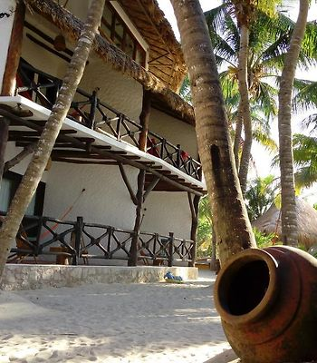 Beachfront Hotel La Palapa - Adults Only photos Exterior Hotel information