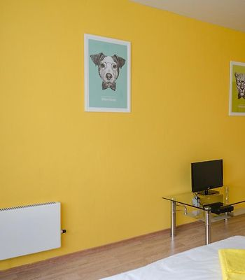 Yellow Rooms On Podmoskovny Boulevard photos Room