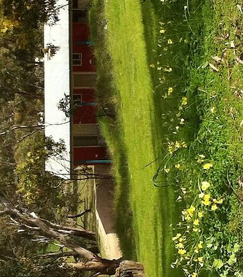 Clare Valley Cabins photos Exterior Hotel information