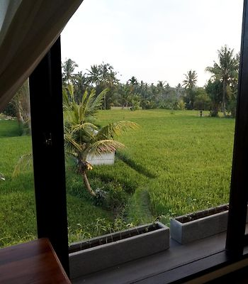 Bisma Cottages Ubud photos Exterior