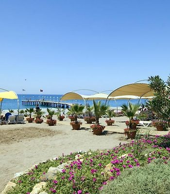 Gypsophila Holiday Village photos Exterior Hotel information
