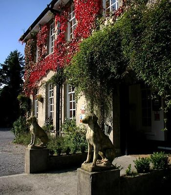 Ty Newydd Country Hotel photos Exterior Room information