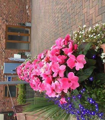 Tower House Executive Guest House photos Exterior Hotel information
