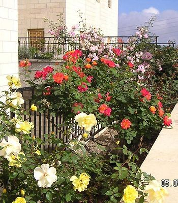 St Andrew'S Guesthouse Ramallah photos Exterior Hotel information