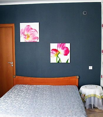 Central Apartments Petrozavodsk photos Room