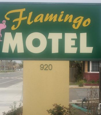 Flamingo Motel photos Exterior Hotel information