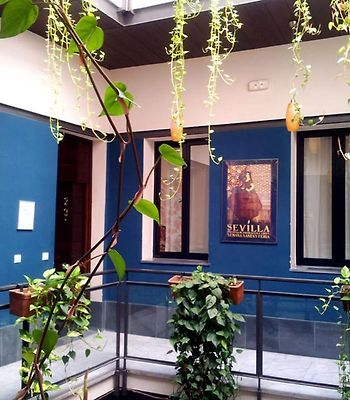 Oasis Backpackers' Hostel Sevilla photos Exterior Hotel information