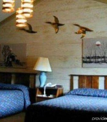 Woodland Motor Lodge photos Room