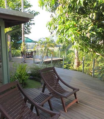 Daintree Village Bed And Breakfast photos Exterior Hotel information