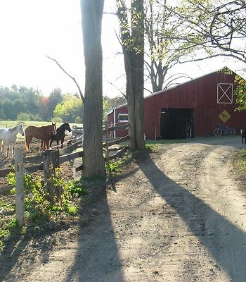 Country And Farm Casitas - For Horse And Hot Tub Lovers photos Exterior