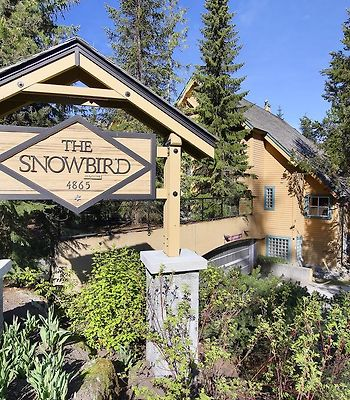 Snowbird By Whiski Jack photos Exterior Hotel information