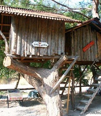Turkmen Tree Houses photos Exterior