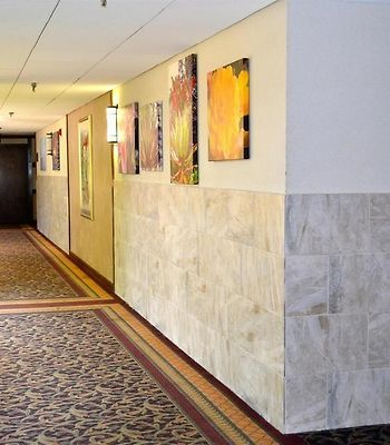 Best Western Premier Milwaukee-Brookfield Hotel & Suites photos Interior
