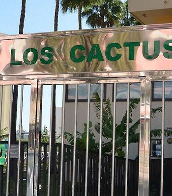 Los Cactus photos Exterior