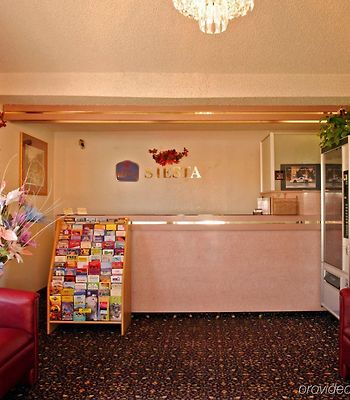Best Western Siesta Motel photos Interior