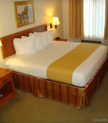 Best Western Executive Inn & Suites photos Room