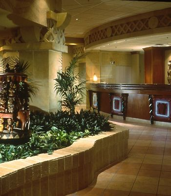 Sheraton Lake Buena Vista Resort photos Interior