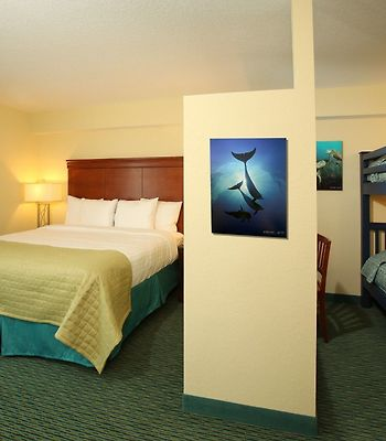 Holiday Inn Resort Lake Buena Vista photos Room