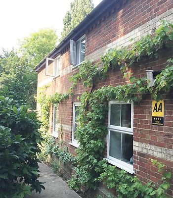 South Norfolk Guest House photos Exterior Hotel information