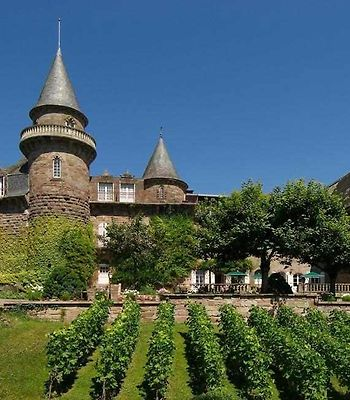 Chateau De Castel Novel photos Exterior Vineyard