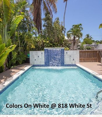 Colors On White photos Exterior Hotel information