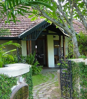 The Havelock Place Bungalow photos Exterior Hotel information