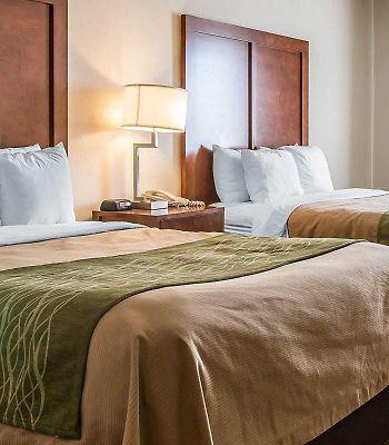 Comfort Inn photos Room Standard Rooms/Bedroom