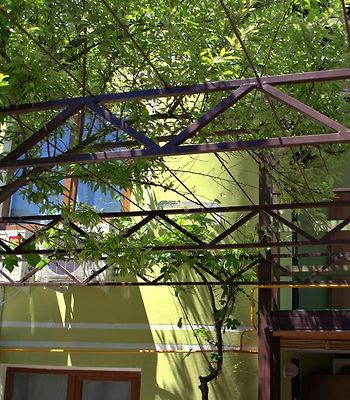 Bamboo Guest House photos Exterior Hotel information