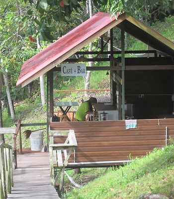 Treetops Homestay photos Exterior Hotel information