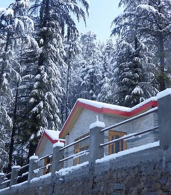 Village Live In Resort Chail photos Exterior Hotel information