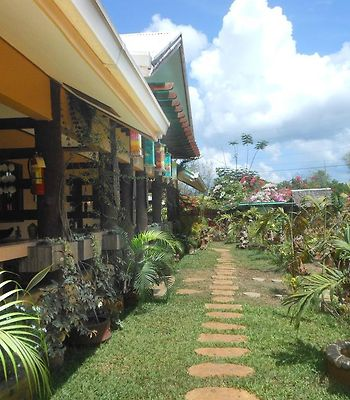 Jungle Flower Guest House photos Exterior Hotel information