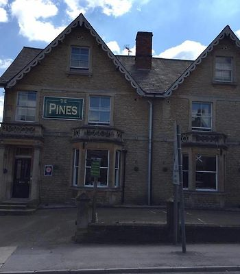 The Pines Guest Accommodation photos Exterior The Pines Guest Accommodation