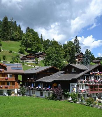 Hotel Caprice - Grindelwald photos Exterior Hotel information