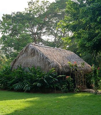 Mama Noots Eco Resort photos Exterior Hotel information