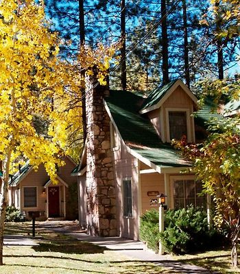 Sleepy Forest Cottages photos Exterior Hotel information