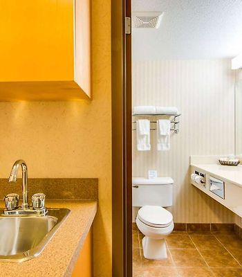 Peavine Inn And Suites High Prairie photos Room Guestroom Washroom preview