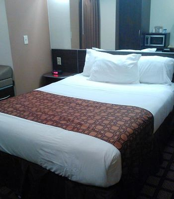 Microtel Inn And Suites Eagle Pass photos Room