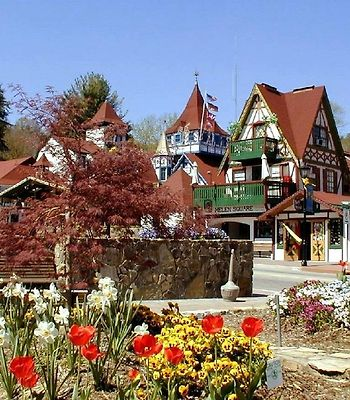 Black Forest B&B And Luxury Cabins photos Exterior Hotel information