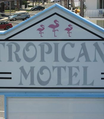 Tropicana Motel photos Exterior Hotel information