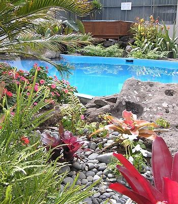Paihia Pacific Resort photos Exterior Photo album