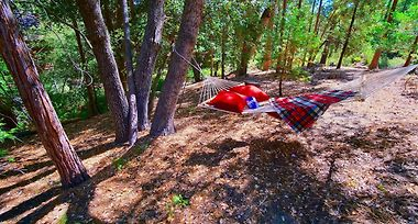 DUCK'S LANDING IDYLLWILD, CA (United States) - from US$ 173