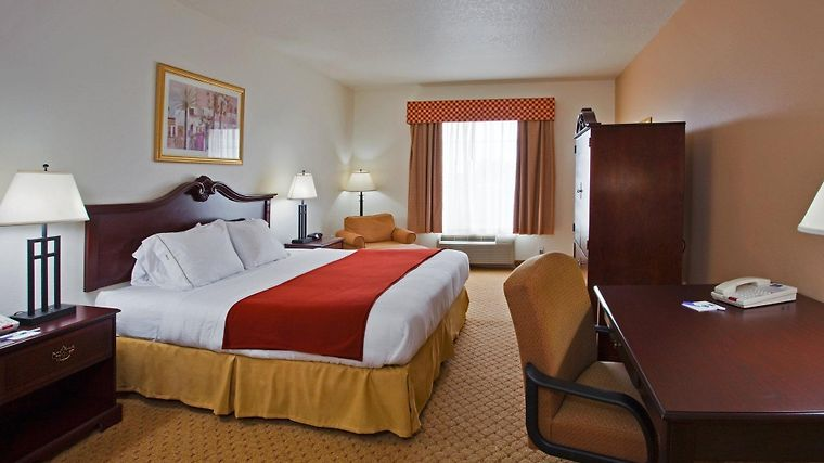 Holiday Inn Express Hotel & Suites Tampa Stadium Airport Area photos Room