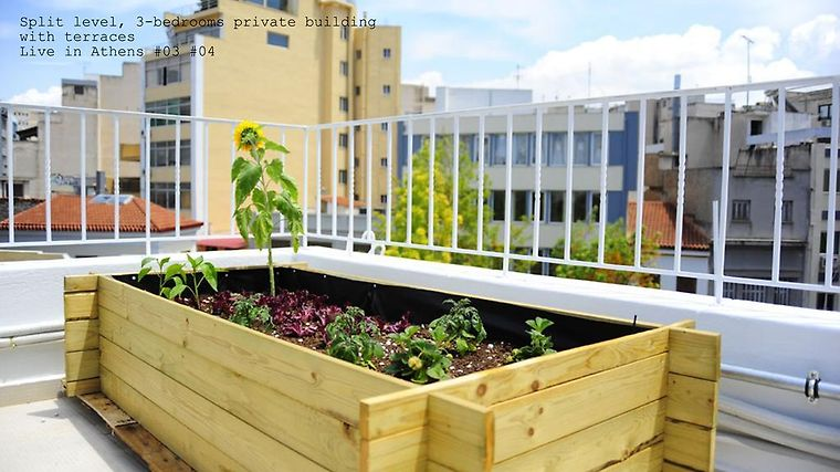 Live In Athens, Short Stay Apartments photos Exterior Hotel information