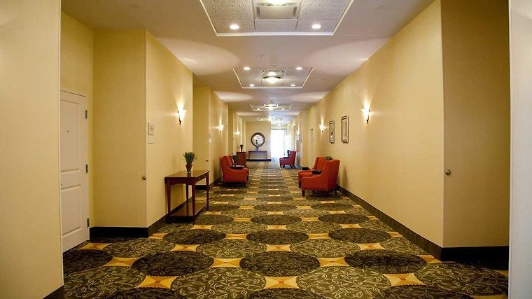 °HOTEL HILTON GARDEN INN TAMPA/RIVERVIEW/BRANDON TAMPA, FL 3* (United  States)   From US$ 129 | BOOKED