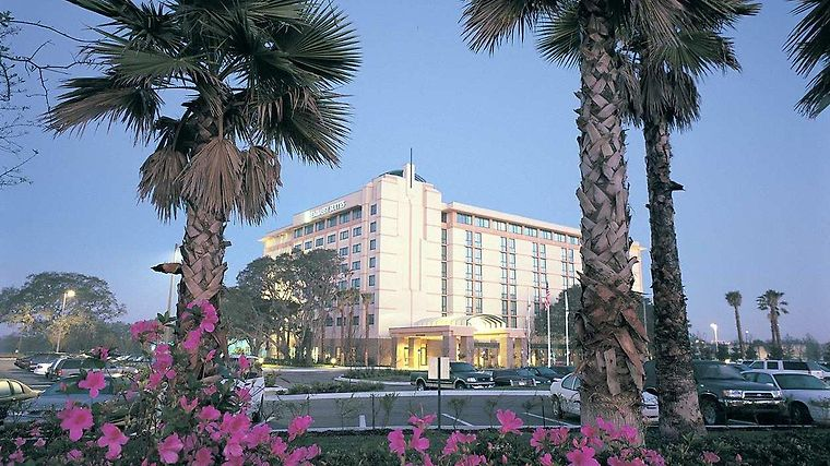 Embassy Suites Tampa - Usf/Near Busch Gardens Exterior